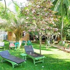 Отель Ypsylon Tourist Resort Шри-Ланка, Берувела - отзывы, цены и фото номеров - забронировать отель Ypsylon Tourist Resort онлайн бассейн