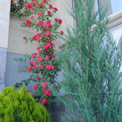 Отель Олимпия фото 15