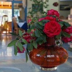 Bora Bora Hotel Солнечный берег интерьер отеля фото 2