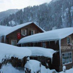 Kuspuni dag evi Турция, Чамлыхемшин - отзывы, цены и фото номеров - забронировать отель Kuspuni dag evi онлайн парковка