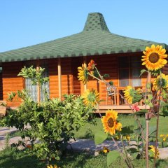 Отель Cirali Almira Bungalow 2* Бунгало фото 22