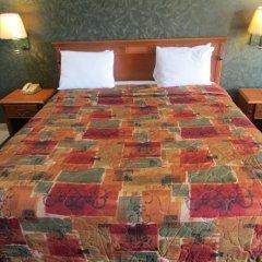 Отель Crystal Inn Suites & Spas 2* Стандартный номер с различными типами кроватей фото 2