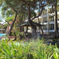 Club Hotel Rama - All Inclusive фото 9