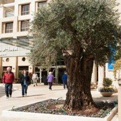Olive Tree Hotel Израиль, Иерусалим - отзывы, цены и фото номеров - забронировать отель Olive Tree Hotel онлайн спортивное сооружение