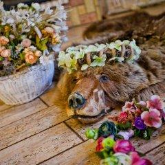 Гостиница Медвежий угол с домашними животными