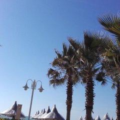 Отель Guesthouse Albion пляж фото 2