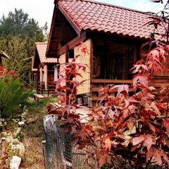 Отель Country Club Primi Faggi Санто-Стефано-ин-Аспромонте фото 6