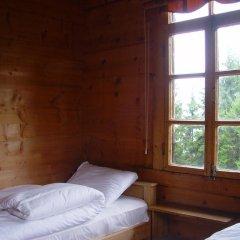 Demircioglu Pokut Dag Evi Стандартный номер с различными типами кроватей (общая ванная комната)
