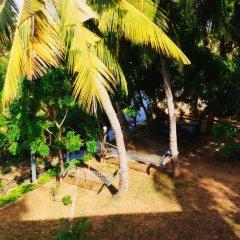 Отель The Green View Yala фото 11