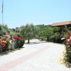 Отель Mythos Bungalows фото 6