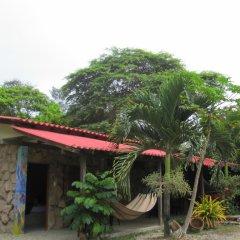 Отель Paradise by Dharma фото 10
