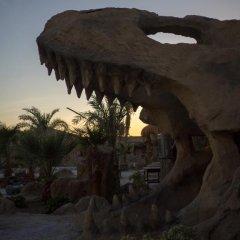 Отель Caves Beach Resort Hurghada - Adults Only - All Inclusive фото 17
