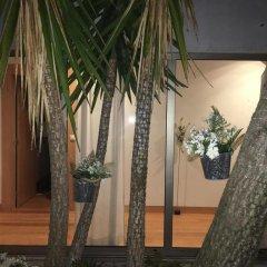 Отель Quintinha Do Miradouro Португалия, Мезан-Фриу - отзывы, цены и фото номеров - забронировать отель Quintinha Do Miradouro онлайн фото 2