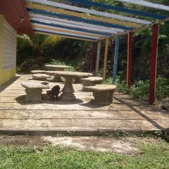 Отель Villa Paola Jamaica фото 13