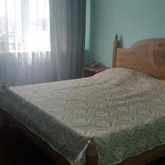 Гостиница Сапсан 3* Стандартный номер разные типы кроватей фото 2