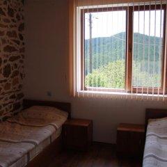 Отель Shishkovi Guesthouse Болгария, Чепеларе - отзывы, цены и фото номеров - забронировать отель Shishkovi Guesthouse онлайн комната для гостей фото 4