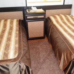 Гостиница Гостиный двор Алтай Стандартный номер с 2 отдельными кроватями фото 2