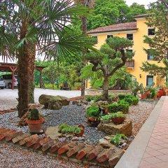 Отель Agriturismo Al Colle Del Ciliegio Италия, Региональный парк Colli Euganei - отзывы, цены и фото номеров - забронировать отель Agriturismo Al Colle Del Ciliegio онлайн фото 12