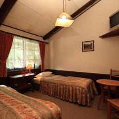 Отель Lodge Karunaju & The Alpine Grill Хакуба комната для гостей фото 5