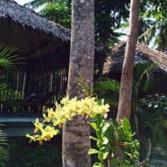 Отель Thiwson Beach Resort фото 10