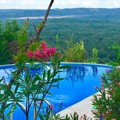 Villa Gudca Турция, Ташкёпрю - отзывы, цены и фото номеров - забронировать отель Villa Gudca онлайн бассейн фото 3