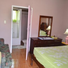 Отель Little Shaw Park Guest House 2* Стандартный номер с различными типами кроватей фото 3
