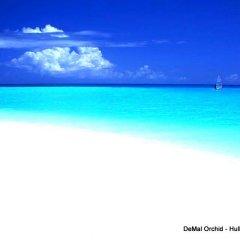 Отель DeMal Orchid пляж