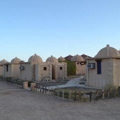 Отель Crazy Horse Camp