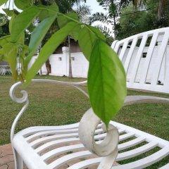 Отель Rajarata Lodge Шри-Ланка, Анурадхапура - отзывы, цены и фото номеров - забронировать отель Rajarata Lodge онлайн фото 3