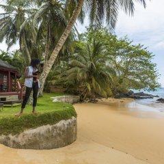 Отель Bom Bom Principe Island 4* Бунгало с различными типами кроватей фото 12