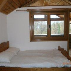 Отель Eco House Gorski Kut Болгария, Аврен - отзывы, цены и фото номеров - забронировать отель Eco House Gorski Kut онлайн комната для гостей фото 3
