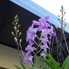 Отель Forum House Таиланд, Краби - отзывы, цены и фото номеров - забронировать отель Forum House онлайн интерьер отеля фото 2