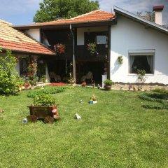 Отель House Gabri Болгария, Тырговиште - отзывы, цены и фото номеров - забронировать отель House Gabri онлайн фото 17