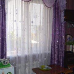 Гостевой Дом Инна - Санна удобства в номере фото 2