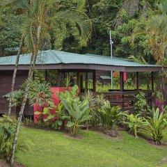 Отель Chachagua Rainforest Ecolodge фото 19