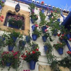 Hotel Madinat фото 8