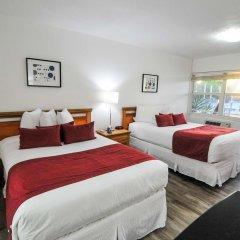 Отель Regency Inn & Suites 2* Стандартный номер с различными типами кроватей фото 5