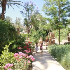 Отель Ecolodge Bab El Oued Maroc Oasis фото 9