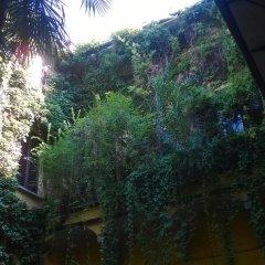 Отель The Frog's Hideaway Италия, Болонья - отзывы, цены и фото номеров - забронировать отель The Frog's Hideaway онлайн балкон