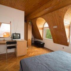 Отель Guest House Spiro near Botanical Garden удобства в номере