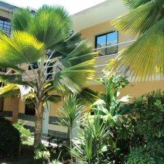 Отель Aparta Hotel Bruno Доминикана, Бока Чика - отзывы, цены и фото номеров - забронировать отель Aparta Hotel Bruno онлайн фото 9