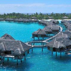 Отель Four Seasons Resort Bora Bora 5* Бунгало с различными типами кроватей фото 12