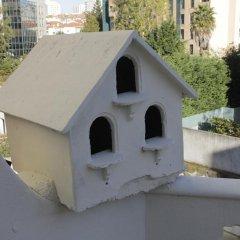 Oporto Music Hostel Кровать в общем номере с двухъярусной кроватью фото 2