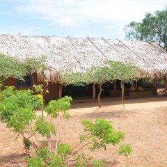 Отель Back of Beyond - Safari Lodge Yala 3* Бунгало с различными типами кроватей фото 19