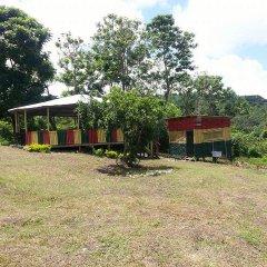 Отель Shiloh Ямайка, Каслтон - отзывы, цены и фото номеров - забронировать отель Shiloh онлайн детские мероприятия