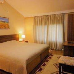 Отель Viktoria Албания, Тирана - отзывы, цены и фото номеров - забронировать отель Viktoria онлайн комната для гостей фото 4