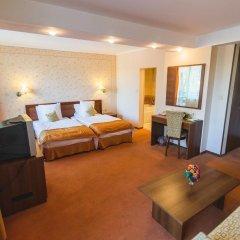SPA Hotel Borova Gora 4* Стандартный номер с двуспальной кроватью фото 3