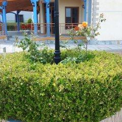 Отель Globi Албания, Шенджин - отзывы, цены и фото номеров - забронировать отель Globi онлайн фото 5