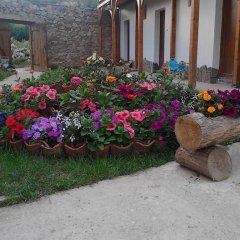 Отель Shishkovi Guesthouse Болгария, Чепеларе - отзывы, цены и фото номеров - забронировать отель Shishkovi Guesthouse онлайн фото 5