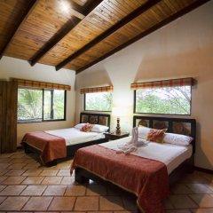 Отель Chachagua Rainforest Ecolodge комната для гостей фото 2